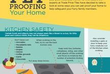 Pet Safety / Tips on how to keep your pets safe at home, in the car, or while traveling.