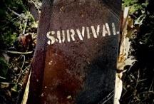 survival / by jill Graham/VanWormer