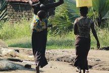 Uganda Travel Tips / The ultimate Uganda bucket list + reasons to visit.