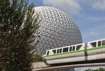Disney World Trips / I can plan your vacation to Disney or you can join us on one of our hosted trips. 888-895-5255