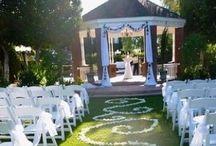 I ❤️ Weddings  / Aspiring wedding planner  / by Rachel Semik