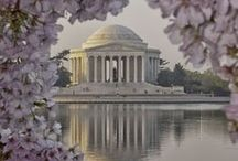 Washington D.C. / How to possibly see it all?
