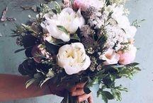 //flower