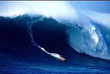 Surfing / by Intrepid Writer