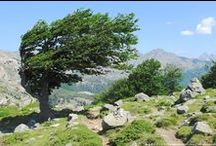 GR20 High Route - France / The GR20 in Corsica is one of the Europe's finest mountain walk that offers spectacular sceneries and an amazing experience. The route traverses Corsica diagonally from north to south through jagged peaks and rocky paths.