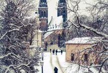 Winter in Prague / Prague covered in snow is one of the most magical sights. Explore this board to discover the best way to experience Prague in the winter.