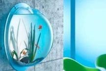 Fish Tanks and Bowls