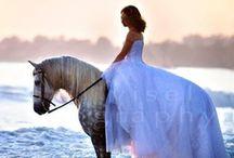 All things wedding!!!