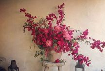 Floral / Celebrating creative floral design from around the world  / by Shannon Mackenzie Orr