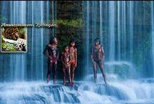 [Area-AB] [Amazônia-Brasil] Amazonas Acre Rondonia Amapa Para Roraima Mato Grosso Xingu / Amazonas Manaus Para  Acre Rondonia Amapa Roraima Mato Grosso Xingu + Amazonía Entera / by Avenida Azul
