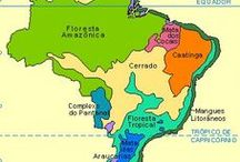 {B00} B R A S I L / ⛐⛐⛐ 7 Subareas: Mata dos Cocais, Nordeste, Bahia, Sertão, Serra do Espinhaço, Centro, Serra do Mar - (não incluindo Amazonia Brasil Sul e Pantanal)