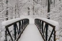 Merry X-mas / The most beautiful season !!!