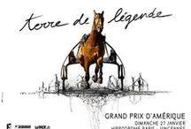 #GPAMERIQUE 13 - GRAND PRIX D'AMERIQUE 2013