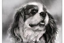 psy rysunek ołówkiem / psy rysunek ołówkiem
