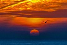 Sunrise or sunset / The beauty of the sun.  / by Charles Mooney