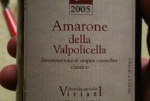 Italian wine / Our favorite Italian wine.