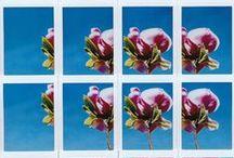 KEEPING MEMORIES - INSTAX / Everything around my Fujifilm Instax Mini 90 Neo Classic camera :D