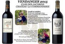 Vendanges 2015 CHATEAU LA COMMANDERIE
