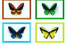Wings By Dalgaard / Wings By Dalgaard - butterflys in frames. https://m.facebook.com/WingsByDalgaard/