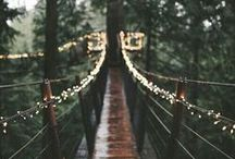 Forest ♡