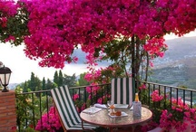 Patios Porches and Decks / by Blanche Powell Littlefield Thompson