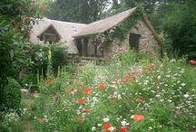 Gardens / Jardins
