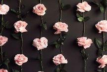 Mariage Roses et Pétales / Des fleurs encore des fleurs