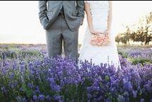 Mariage en été - Provence