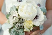 Garden & FlowerS!*