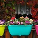 Balcony garden / Not everybody is lucky enough to have a real garden. But, luckily you can plant flowers on your balcony. This board features balcony garden ideas.