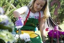 Gardening for Fun / Gardening is one of the most enjoyable past time activities. Join us in having fun with the greens.