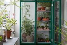 Inspire with urban gardening