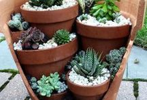 Flower pot DIY / We believe in reusing old planters. Here are a few tips what you can do to freshen them up.