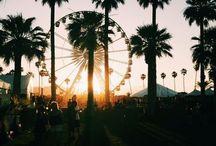 coachella / festival
