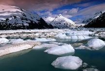 Frozen In Nature