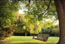 Gardens at Arrowhead Inn Bed & Breakfast in Durham NC / Six acres of secluded beauty at the edge of Durham NC #durhamnc #countrygardens #gardening #historichomegardens #arrowheadinn
