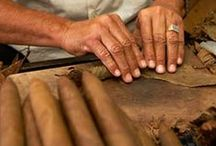 "Cigar Rolling ""One Of Tampa's Favorate Past Time."""