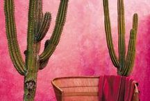 Outdoor Walls - Cool & Colorful