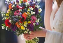 Multi coloured wedding