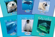 Favorite Zoobooks Gifts / This is the place to check out Zoobooks' great gifts and wild animal products!