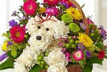 Fine Flowers & Vases