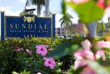 Sundial Blog Images / Stay up to date on everything happening at Sundial Resort by subscribing to our blog! www.sundialresort.com/blog/