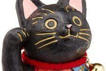 animal – cat 猫