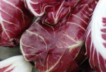 OTTOBRE: radicchio / radish / Un ingrediente del mese di ottobre: radicchio, selezione di ricette by Cookaround e Community