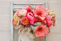 Wedding Ideas on Apricot, Peach, Coral  and Poppy-Red Tones