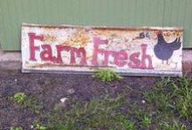 Farm / by Sandra Frayne