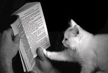 Fur Babies With Books