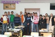 Avezzano (AQ) - Corso preparatorio agli esami di abilitazione / 20 - 27 Settembre e 4 Ottobre 2008