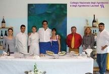 """Gara Nazionale 2008 per Operatore Agrituristico / Istituto d'Istruzione Professionale """"Don Bosco"""" di Viadana (MN), 14 - 15 Maggio 2008"""