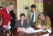 Firmata la Convenzione Agrotecnici / Regione Sicilia per l'accesso al SIAN / Palermo, 23 Aprile 2009